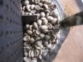 今日の生豆