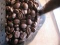 今日の焙煎豆