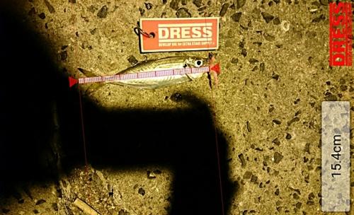 dress_18122015_224736.jpg