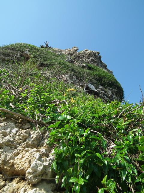 慶座絶壁の断崖を下から眺める