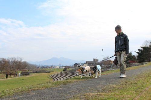 fritake-20151213-sanpo01.jpg