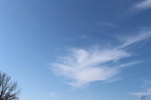 sky-20160211.jpg