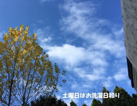 20151213_6.jpg