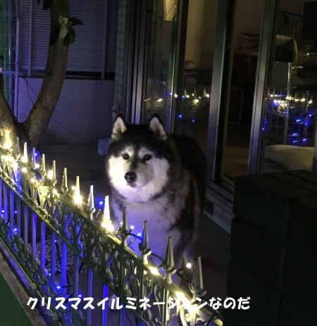 20151215_1.jpg