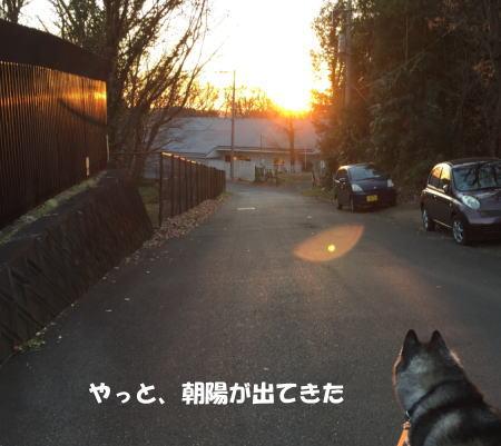 20151222_3.jpg