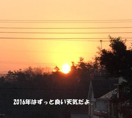 2016-01-07_2.jpg