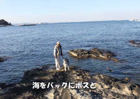 2016-01-10_10.jpg