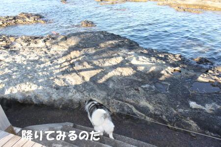 2016-01-10_8.jpg