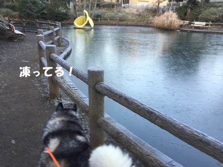2016-01-13_7.jpg
