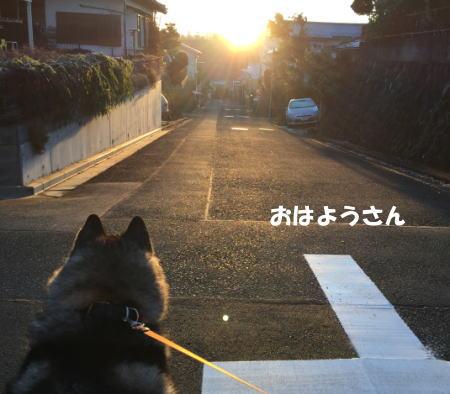 2016-01-13_8.jpg