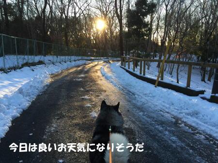 2016-01-19_3.jpg