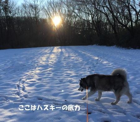 2016-01-19_4.jpg