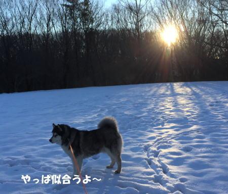 2016-01-19_6.jpg
