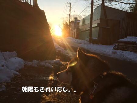 2016-01-21_4.jpg