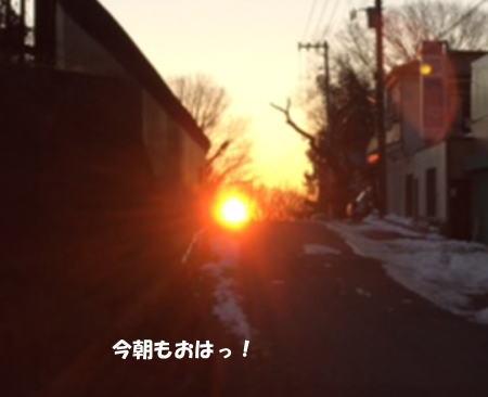 2016-02-02-1.jpg