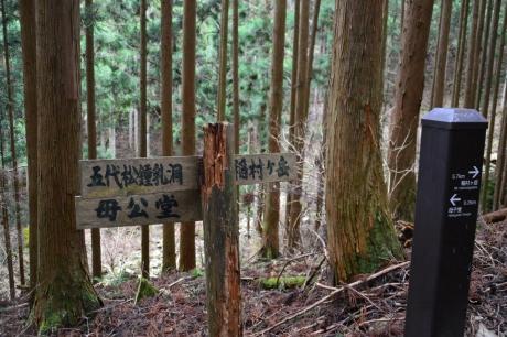 2まずは稲村ヶ岳へ