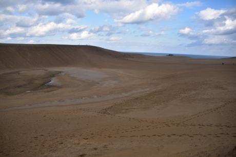 3雨後の砂丘