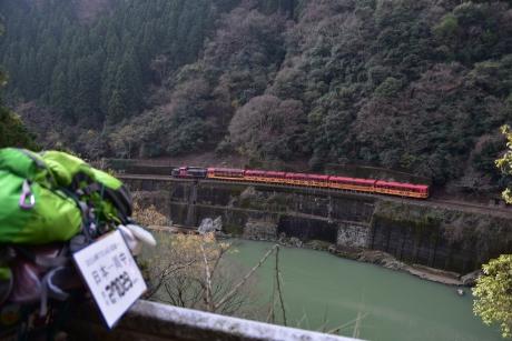 7トロッコ列車も通る