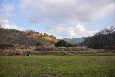 16平和な丘