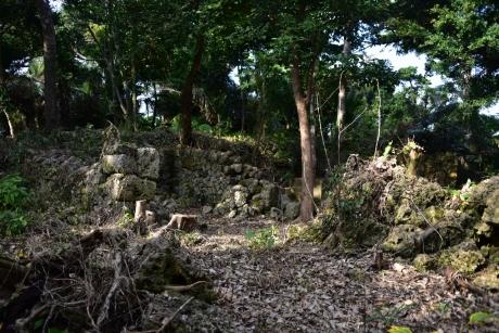 25ジャングルの城跡