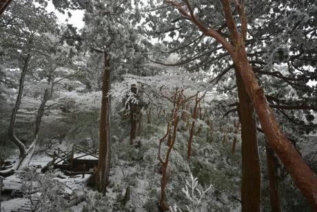 22一面雪景色