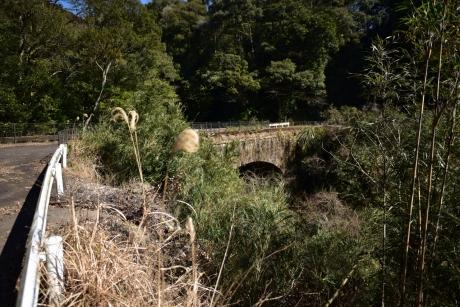 3草に埋もれた旧道の橋