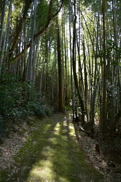 8京都っぽい