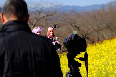09吾妻山公園