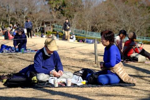 11吾妻山公園