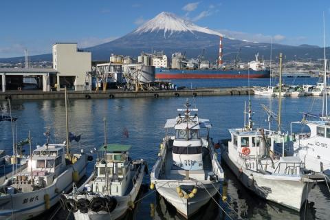 54田子の浦港