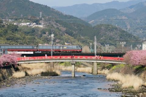 09伊豆急黒船列車