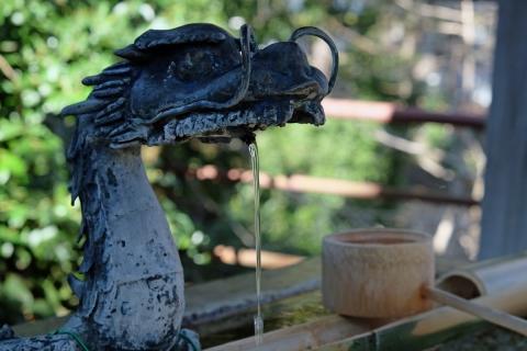 09菅原神社の手水屋の龍