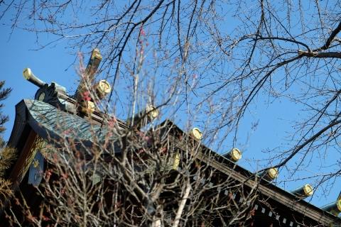 11菅原神社の本殿