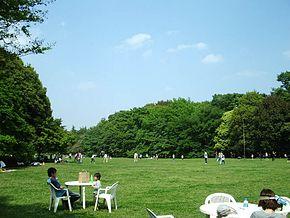 290px-Kinuta_Park_04.jpg