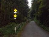 急傾斜の林道