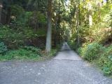 アスファルトの道を登る