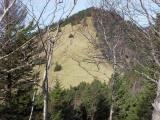 石丸峠から熊沢山への登山道