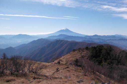小金沢連嶺で富士見三昧ハイク