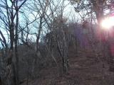 御巣鷹山への急登