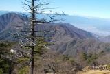 三ツ峠山から西を望む