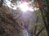 序盤の平坦な登山道