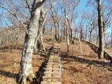 頂上へ続く木道