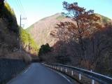 神ノ川林道を歩く
