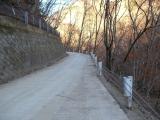 コンクリート舗装の道