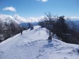 雲取山の頂上