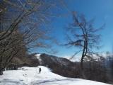 七ツ石山へ