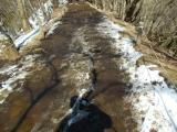 泥だらけの尾根道