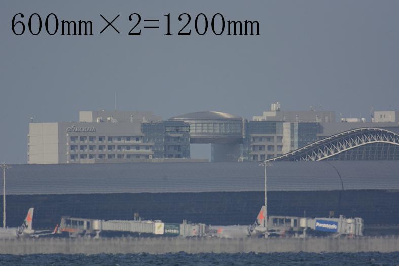 DSC4466_1200.jpg