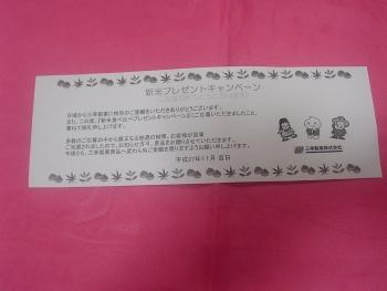 DSC00292c (5)