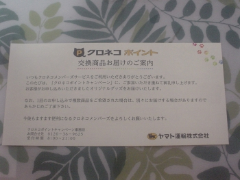 DSC00518c (1)